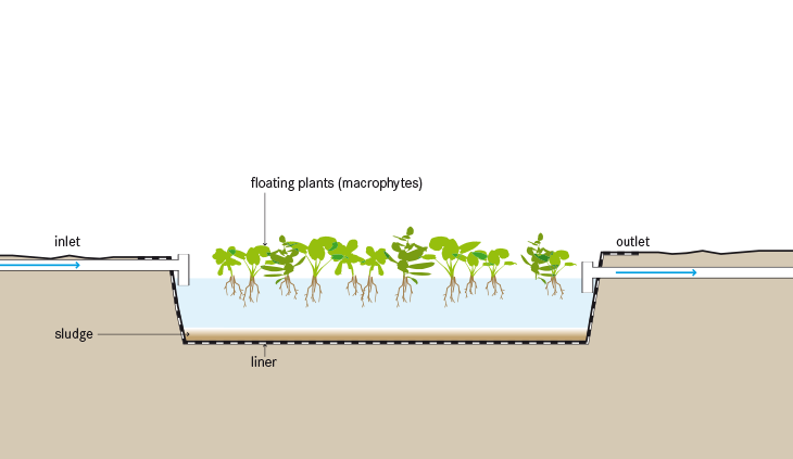 Functional schematic of a floating plant pond. Source: TILLEY et al. 2014
