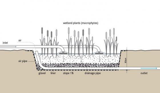 Vertical Flow Cw Sswm