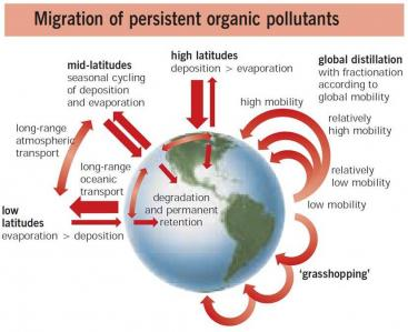 Persistent organic pollutants (POPs) spread via a variety of mechanisms at different latitudes. Source UNEP 2002