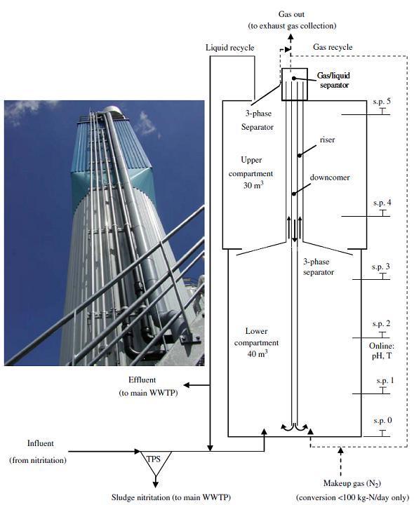 Gas Lift Process : Anammox sswm
