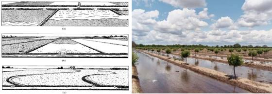 Left: Examples of border irrigation systems. (a) Typical graded border irrigation system. (b) Typical level border irrigation system. (c) Typical contour levee or border irrigation system. Source: WALKER (2003).